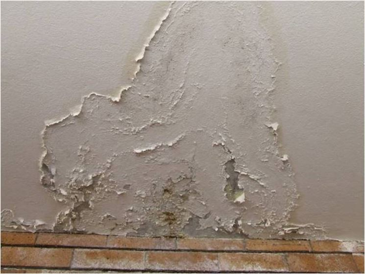 L'intonaco è la finitura superficiale delle murature e svolge una funzione. Intonaco Traspirante Contro L Umidita Di Risalita Pareti Caratteristiche Intonaci Traspiranti