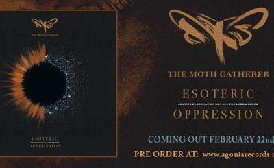 The Moth Gatherer Header