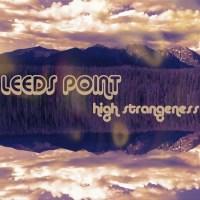 "Premiere: LEEDS POINT Debuts ""High Strangeness"" Video Single"