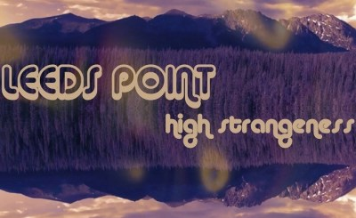 Leeds Point High Strangeness cover