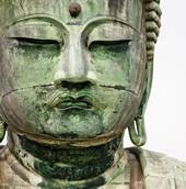 Non-Violence in Buddhism
