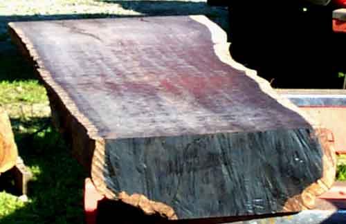 Pecan Burl Cocobolo Rosewood Blackwood Rosewood Beech