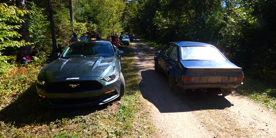 New Mustang and Old Escort