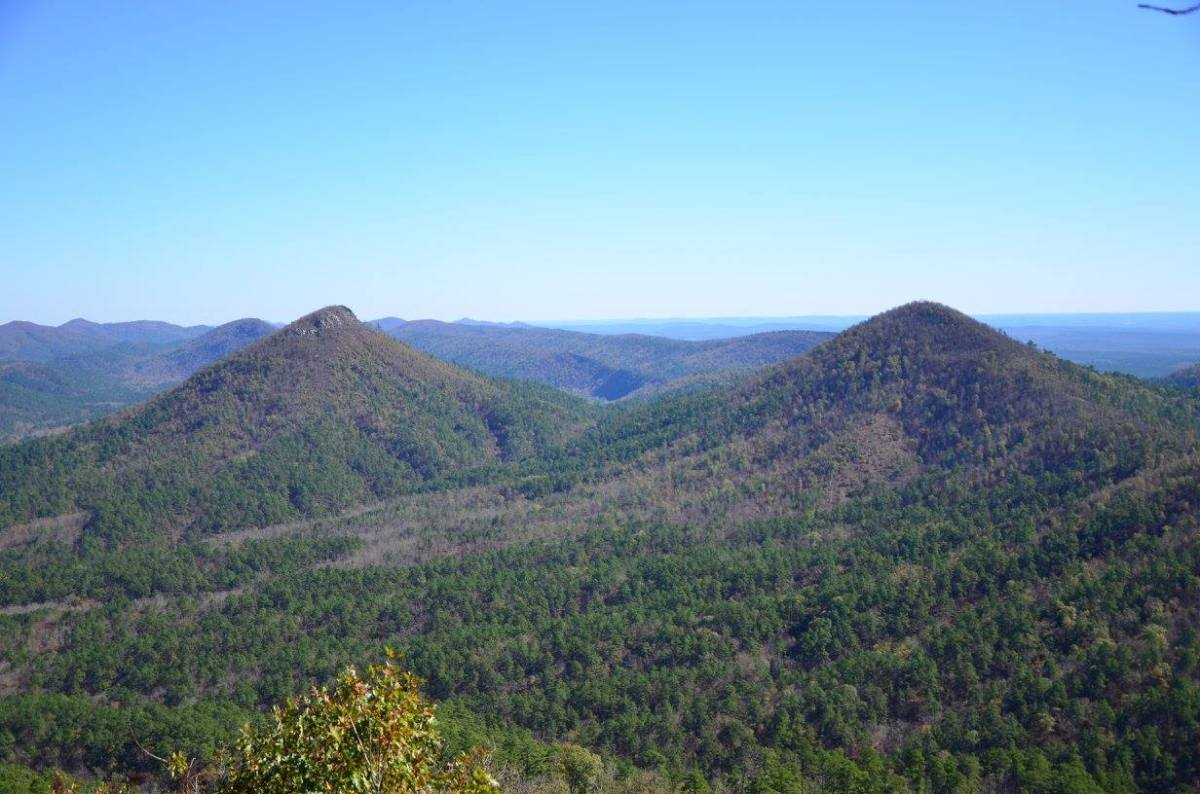 The view looking east from Brush Heap Mountain.