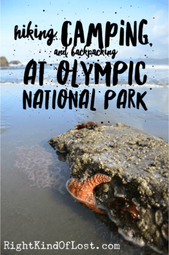 Camping, hiking, backpacking, and exploring Olympic National Park.