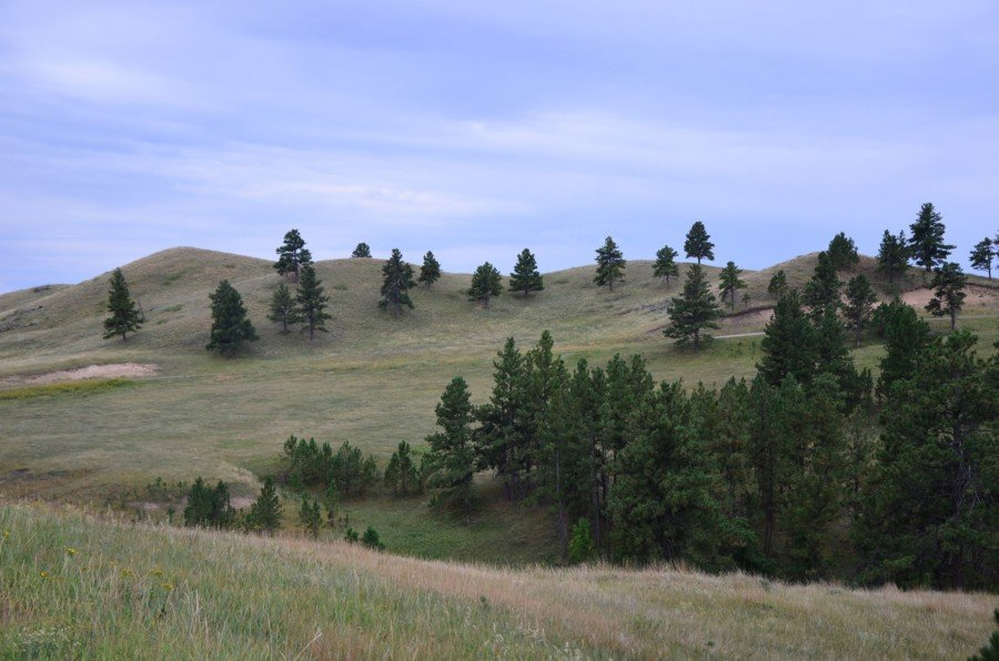 Exploring the Black Hills in western South Dakota and eastern Wyoming will not disappoint. The area offers a great deal to the adventurer.