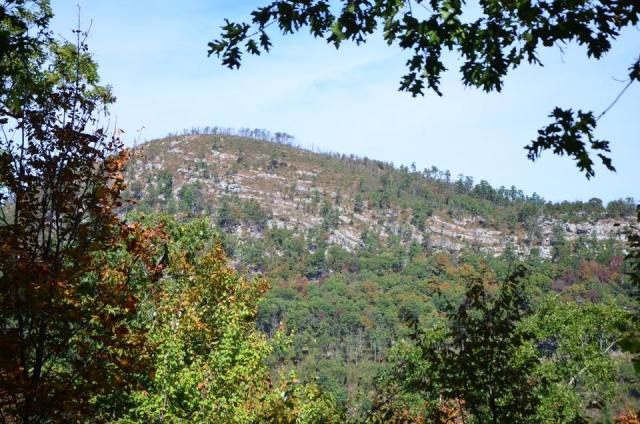 The Athens-Big Fork Trail in southwest Arkansas is considered by some to the be the hardest hike in Arkansas. Are you up for the challenge?