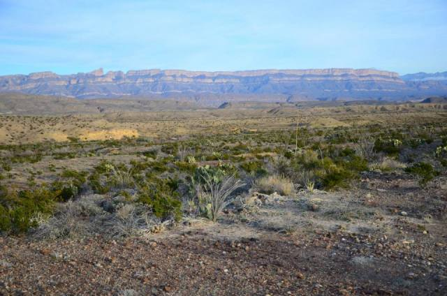 What to do and see if you only have 48 hours in Big Bend National Park.