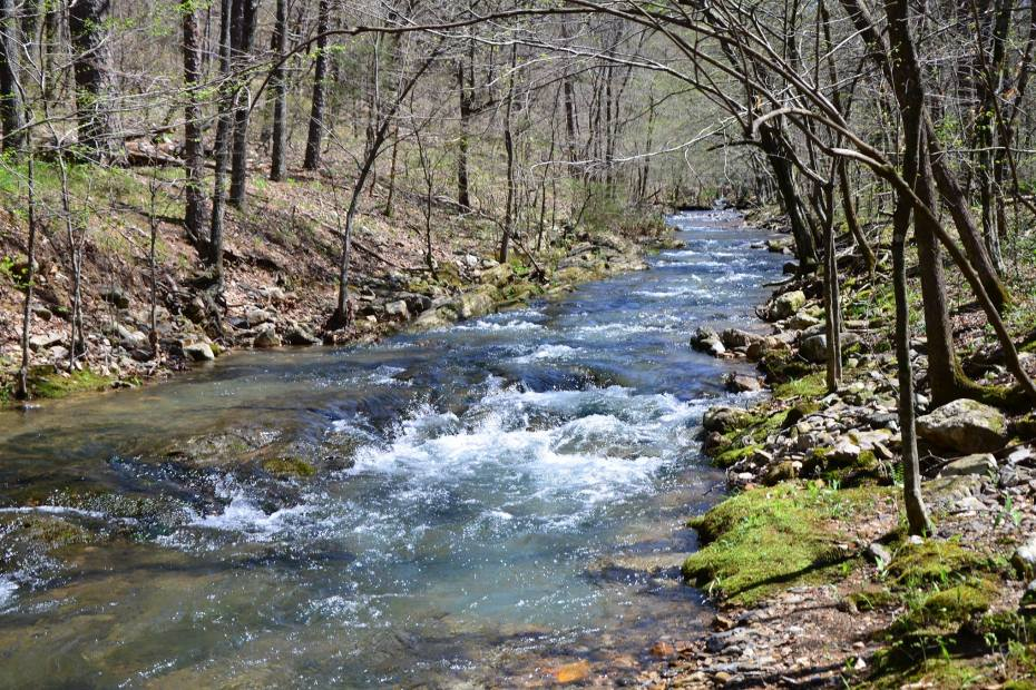 The Caney Creek/Buckeye Mountain Trail is my new favorite trail in Arkansas. It has it all – a gorgeous valley, mountain vistas, and a unique waterfall.