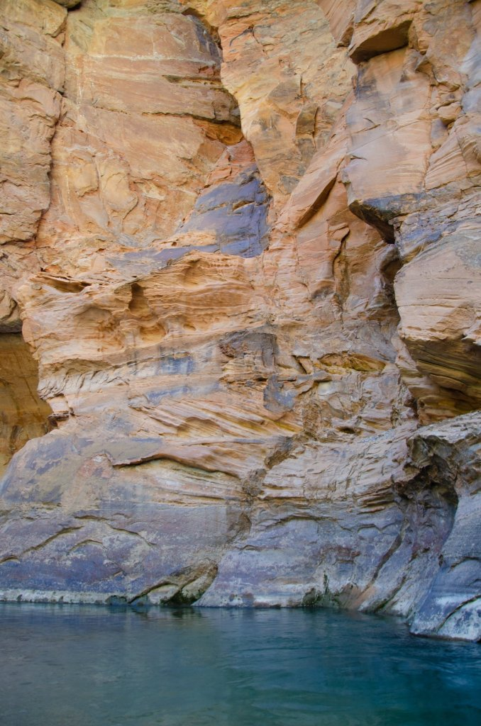 A large wall is shown in The Narrows in Zion National Park