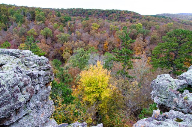 Hiking Pedestal Rocks Kings Bluff Loop in Ozark National Forest, Arkansas