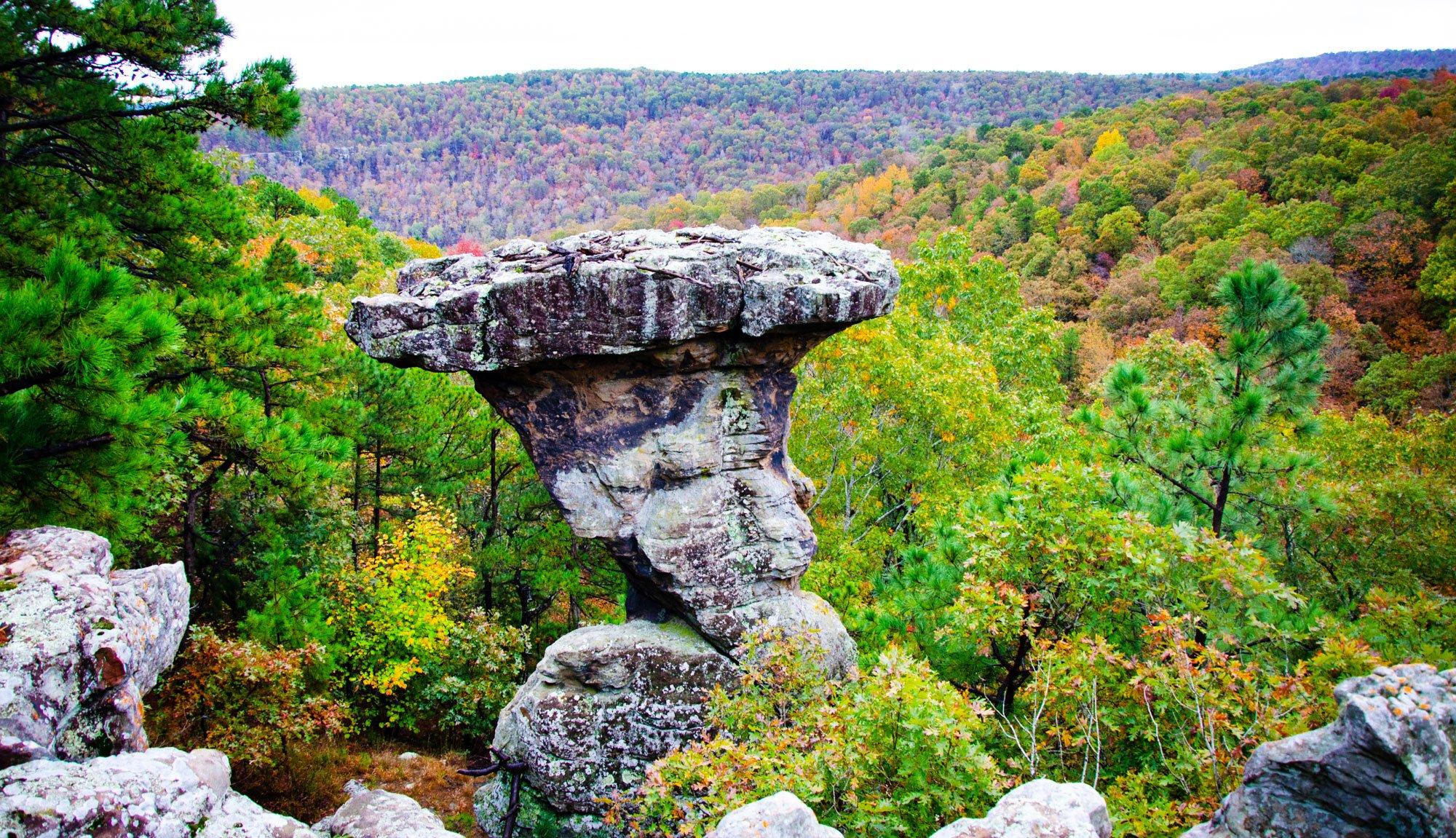 Pedestal Rocks Kings Bluff8