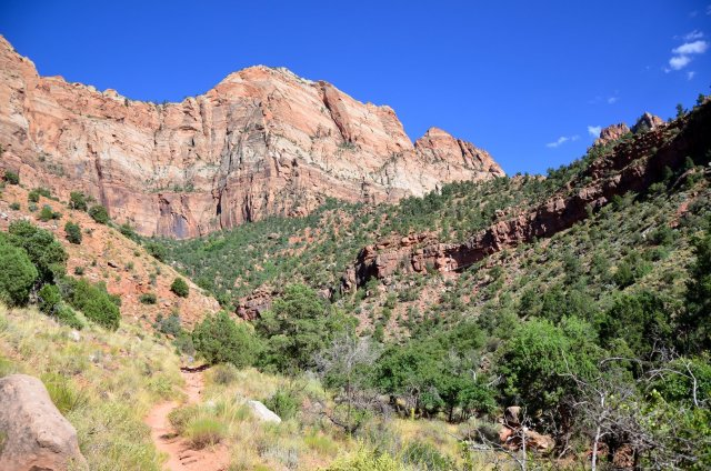 The Watchman Trail at Zion National Park is shown