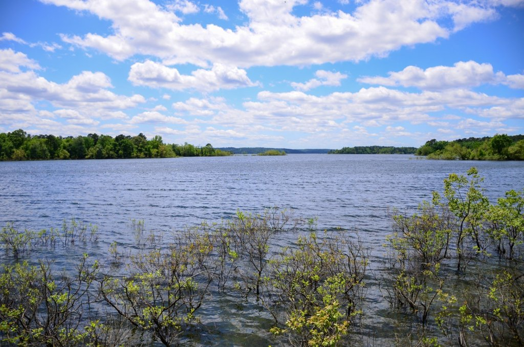 The lake is shown from the Green Heron Trail at DeGray Lake State Park