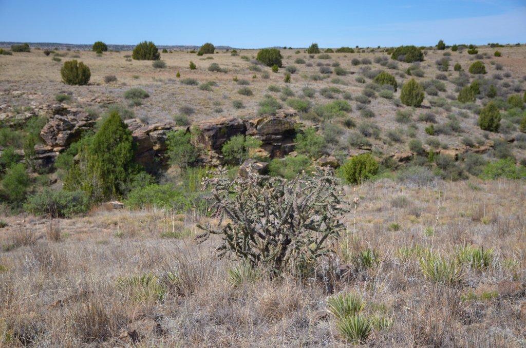 Hiking at Black Mesa State Park