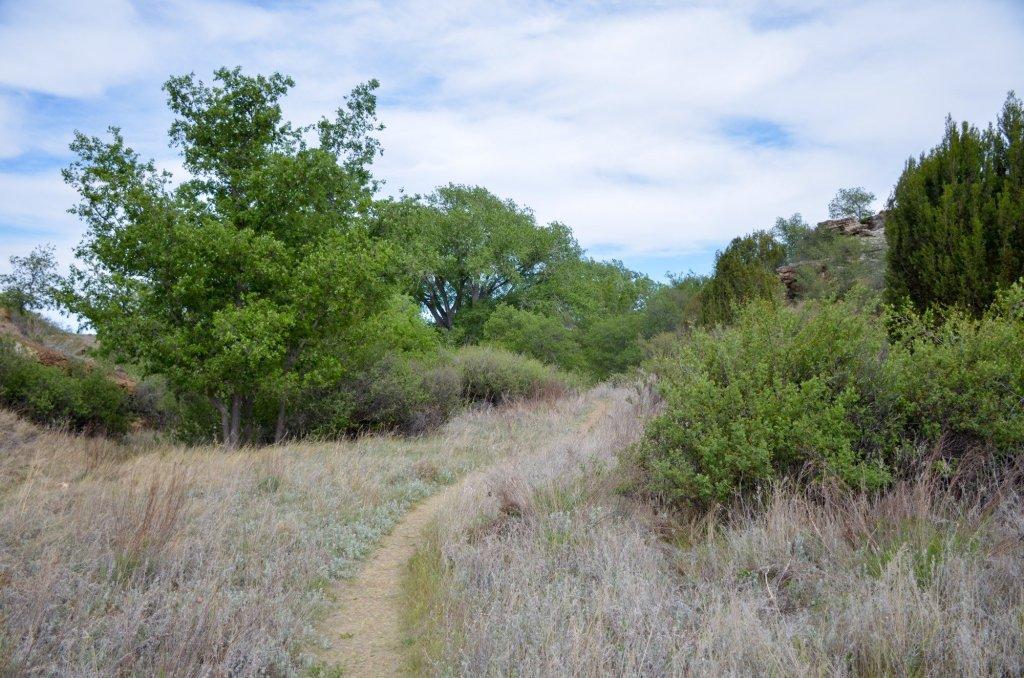The Black Mesa Bird Haven Nature Trail
