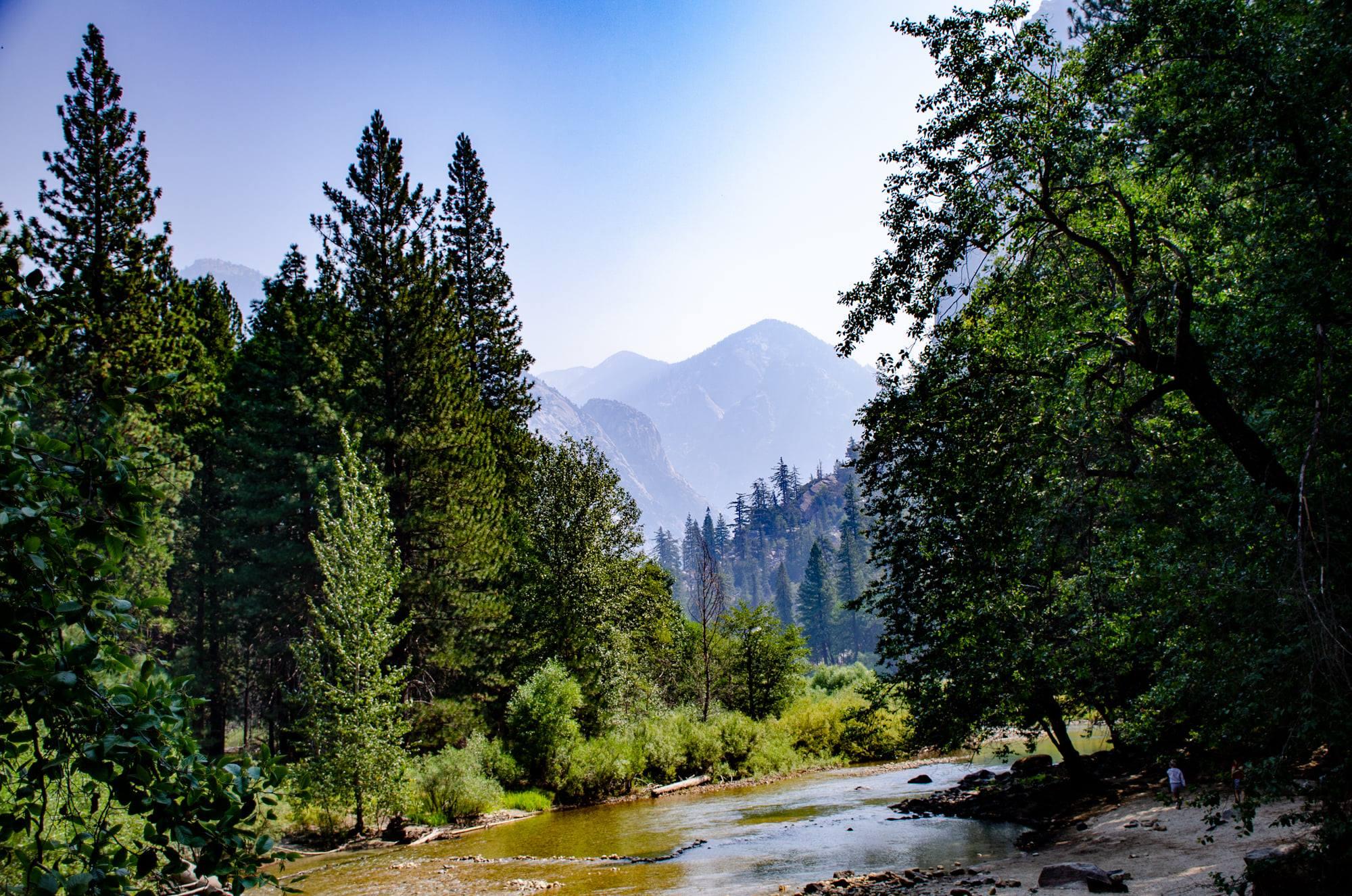 SequoiaandKingsCanyonNationalParks22