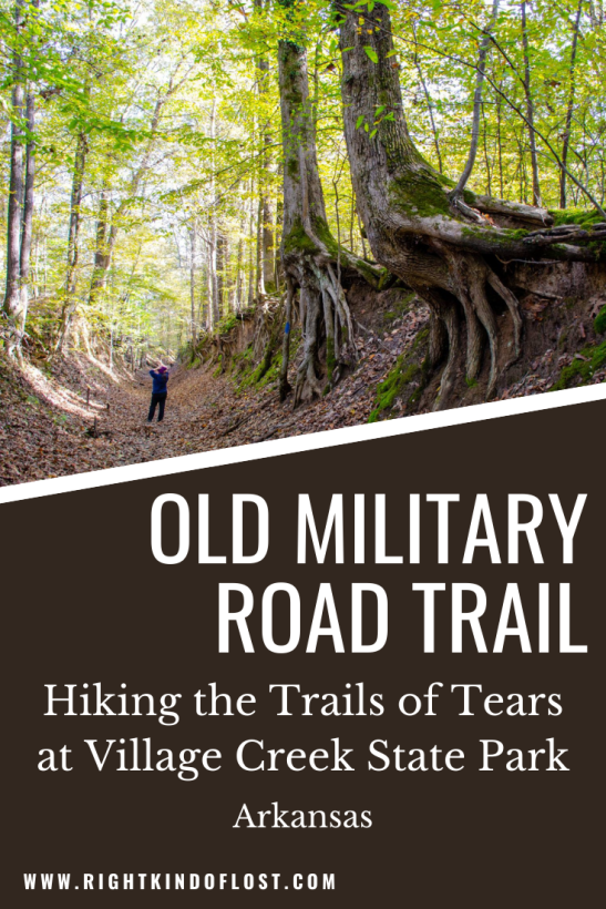 Part of the Trail of Tears National Historic Trail, the Old Military Road Trail at Village Creek State Park allows you to walk into history.