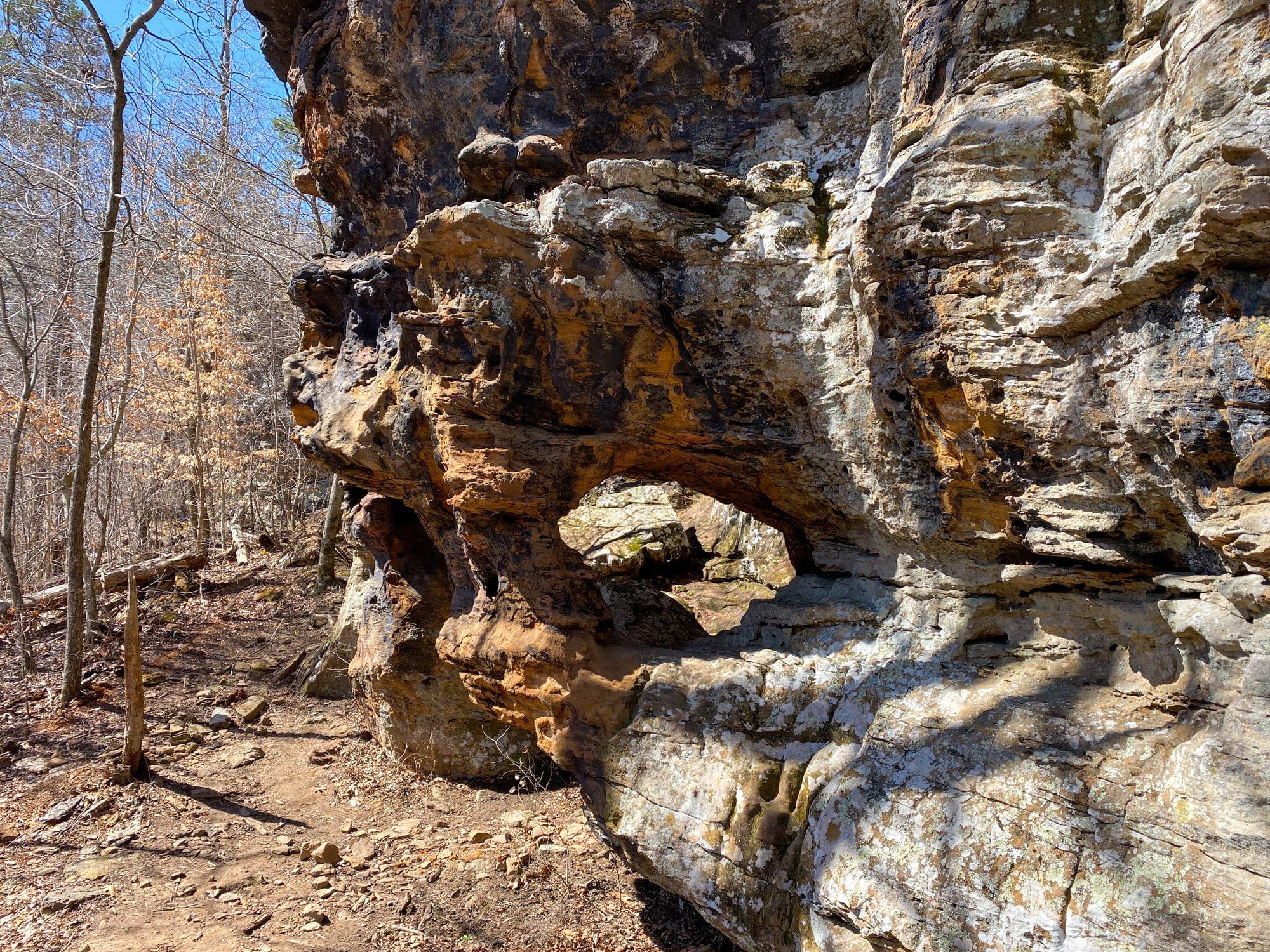 Alum Cove Trail7