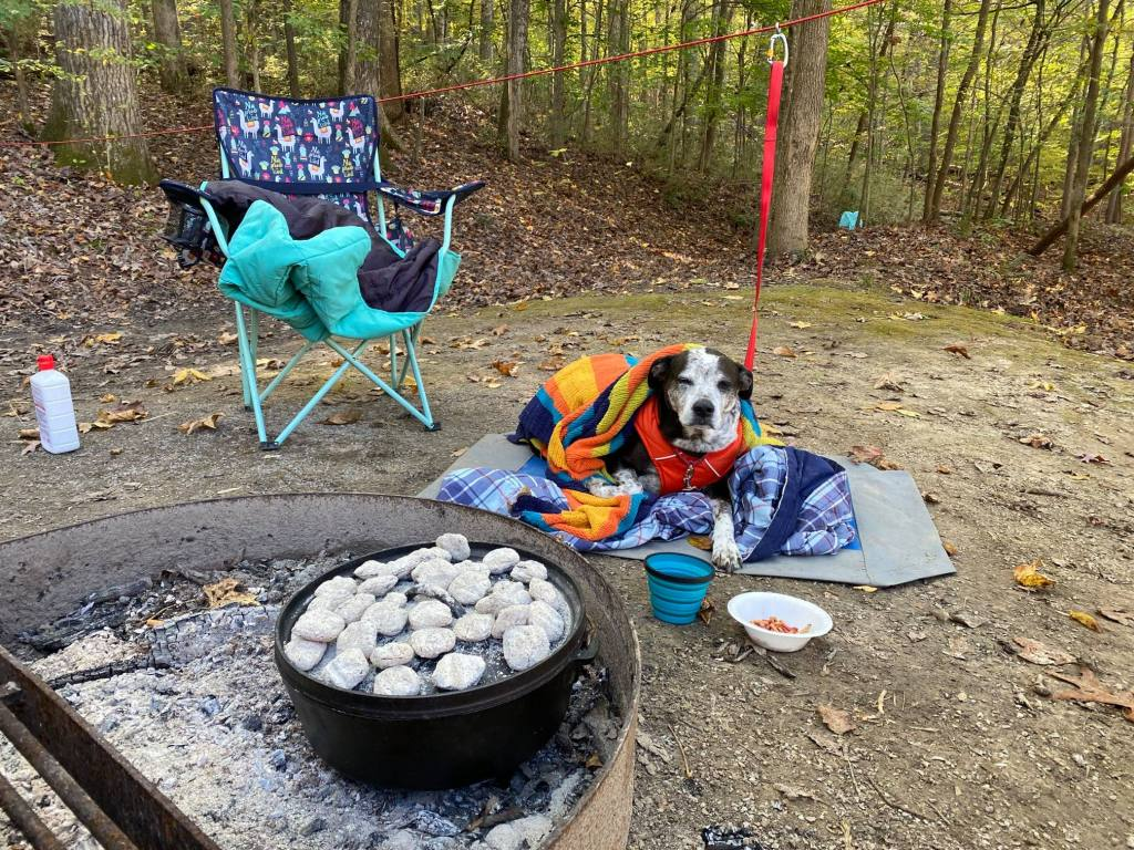 Camping at Village Creek State Park