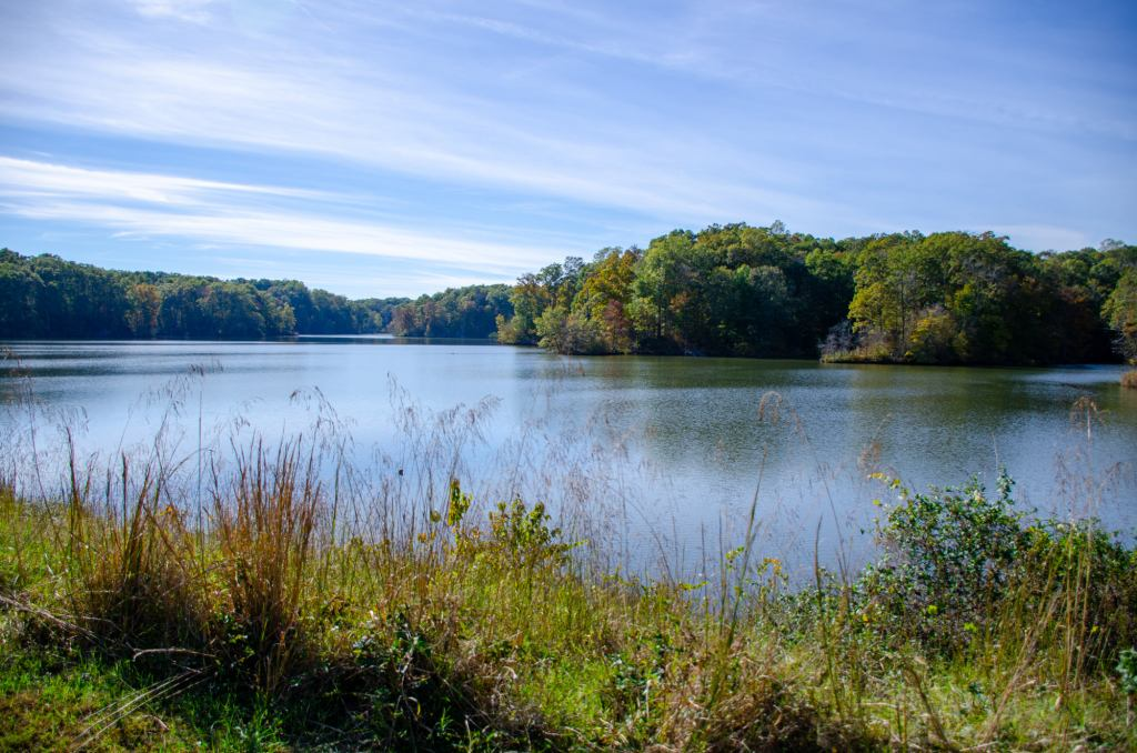 A lake is shown at Village Creek State Park