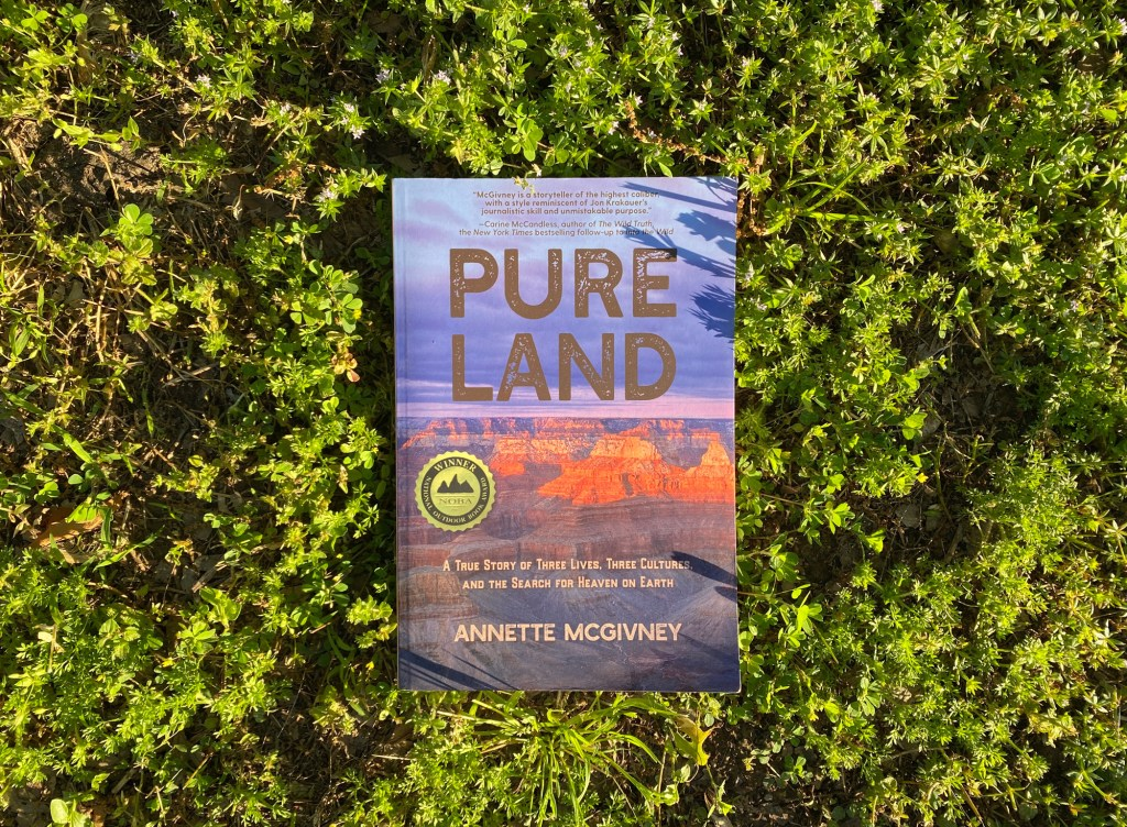 """""""Pure Land"""" book review"""