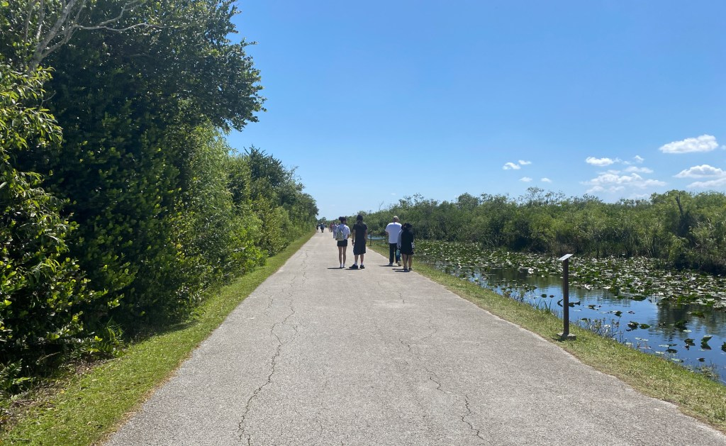 Shark Valley Trail is shown