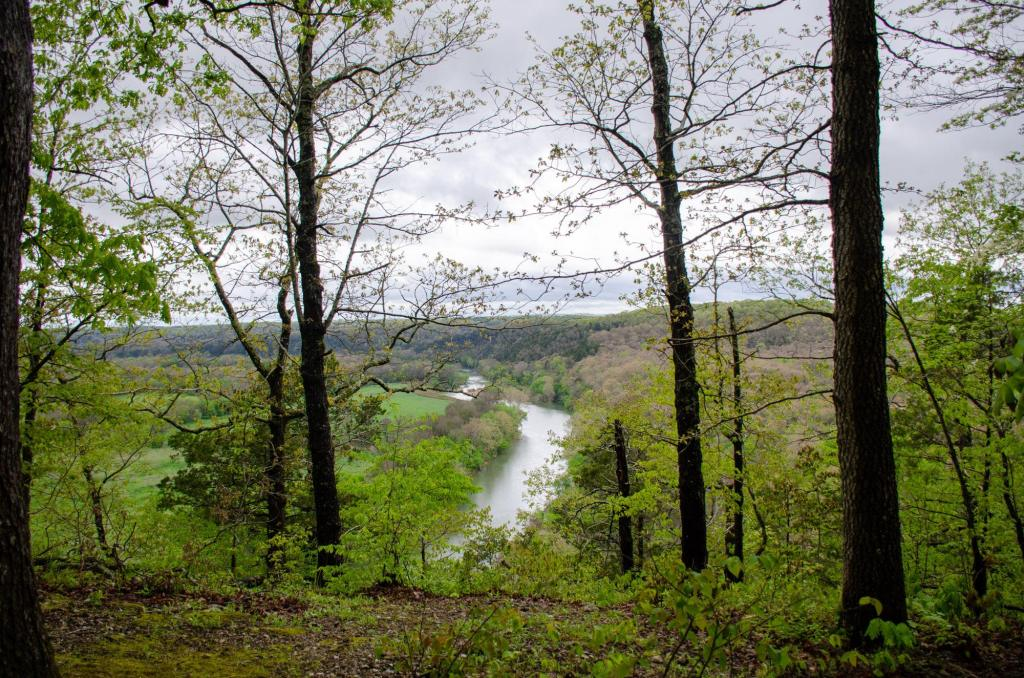 The Buffalo River is shown through the trees on the Riverview Trail