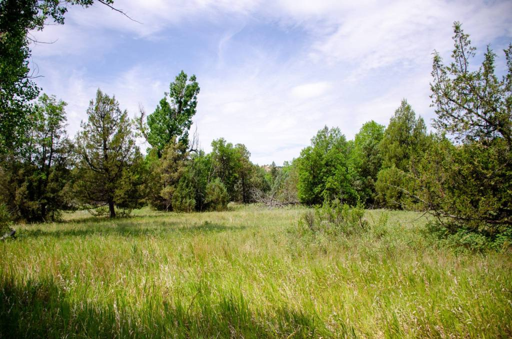The prairie is shown