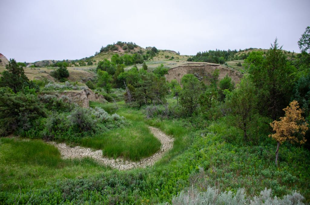 A valley is shown on the Petrified Forest Loop at Theodore Roosevelt National Park