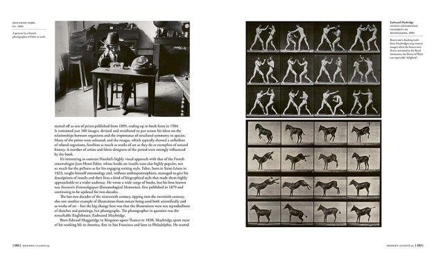Jean-Henri Fabre, ca. 1900, and images from Animal Locomotion, 1887, by Edweard Muybridge