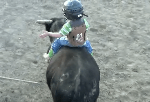 Little Boy Has The Cutest Bull Riding Experience Rtm