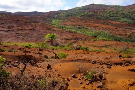 Eaio landscape resembles Africa more than Polynesia