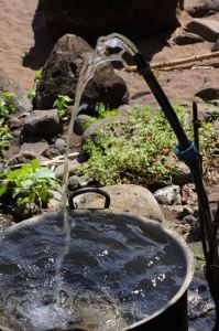 Spring water flows freely at Vaituha, Eiao