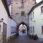 11_freinsheim