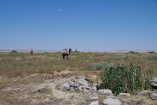 Trockener Brunnen, Kamele und Pferde, statt Fische