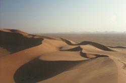 Wüste pur