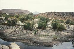 Guelta Afilal im Hoggar