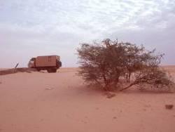 0120_bir_el_gareb