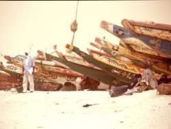 0410_Fischereihafen_Nouakchott