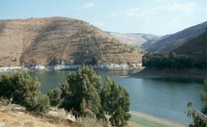 Blick von der staatlichen Olivenplantage über den Stausee