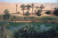 Dagegen hat der Um el Ma (Mutter des Wassers) noch sehr viel Wasser