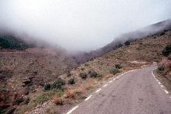 Einstieg in die Sierra Nevada. Leider nur sehr viel Nebel
