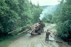 Langholzverladung mit bordeigenen Mitteln