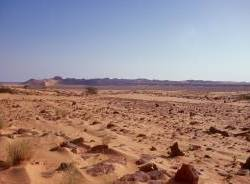 1180_100km bis Atar