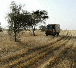1240_Mauretanien_Piste_nach_Timbuktu