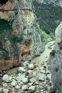 Die Felsen sind ein El Dorado für Kletterer
