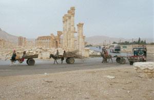 Das schönste Ruinenfeld Syriens mit dem Triumpfbogen und der Säulenstraße