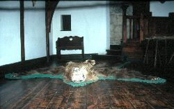 Die Reste eines Karpatenbärs im Kaminzimmer