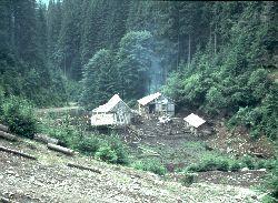 einsamer, im Schlamm eingebetteter Waldbauernhof